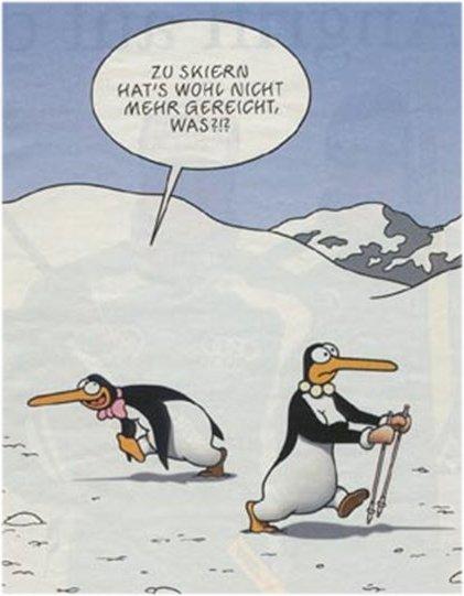 Nordic Walking Fun